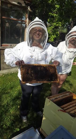 ABC Bees - An Urban Honey Experience victoriadaytoday.com
